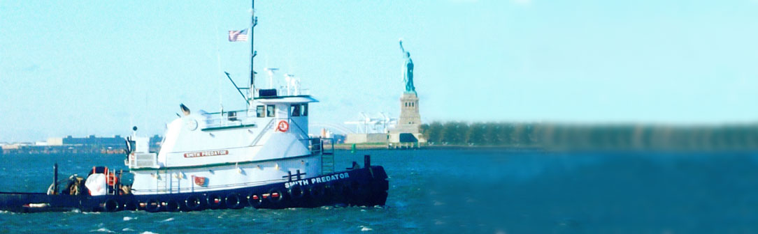 smith-marine-statue-liberty